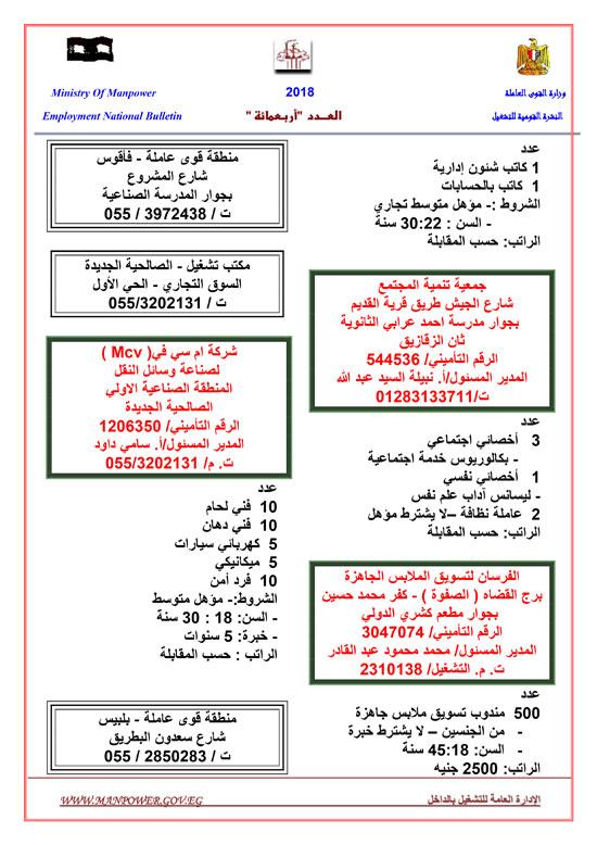 116930-القوى-العاملة-توفر-1809-فرص-عمل-حتى-نهاية-نوفمبر-(6)