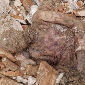 جثمان شاه إيران