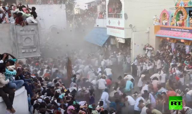 مهرجان سنوى للرشق بروث البقر فى الهند