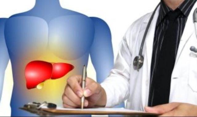 الكبد يؤدى دورا كبيرا في تطهير الجسم من السموم
