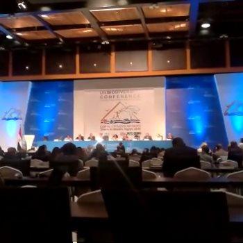 مؤتمر التنوع البيولوجى المنعقد