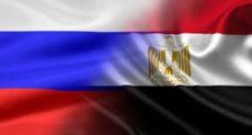 الخارجية تخصص صحفة خاصة على الانترنت  لتيسير إقامة المشجعين المصريين بورسيا