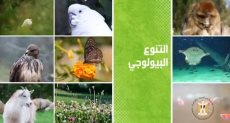 التنوع البيولوجى