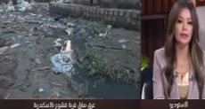 حى العامرية بمحافظة الإسكندرية