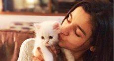 لعب فتاة مع قطتها