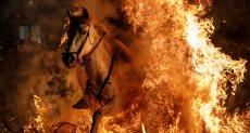 مهرجان قفز الخيول بإسبانيا