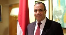 السفير بدر عبد العاطى
