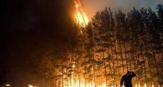 حريق غابات - أرشيفية