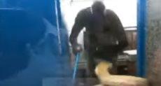 الثعبان يهاجم الحارس