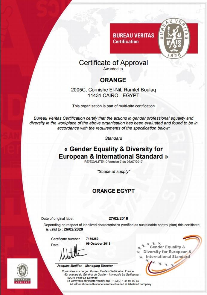 الشهادة الأوروبية الدولية للمساواة بين الجنسين (GEEIS)