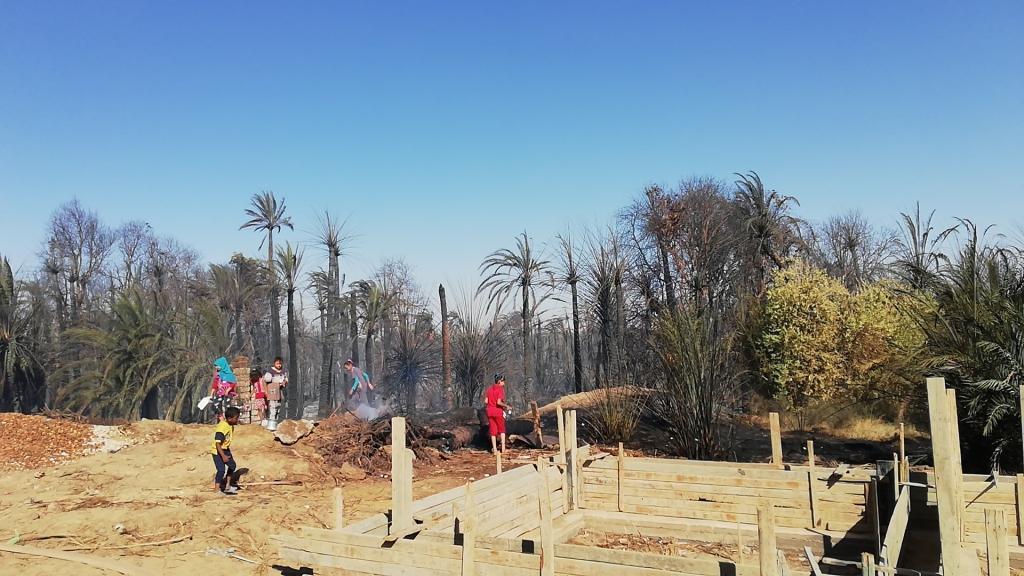 اللقطات الأولى لخسائر حريق الراشدة  (15)