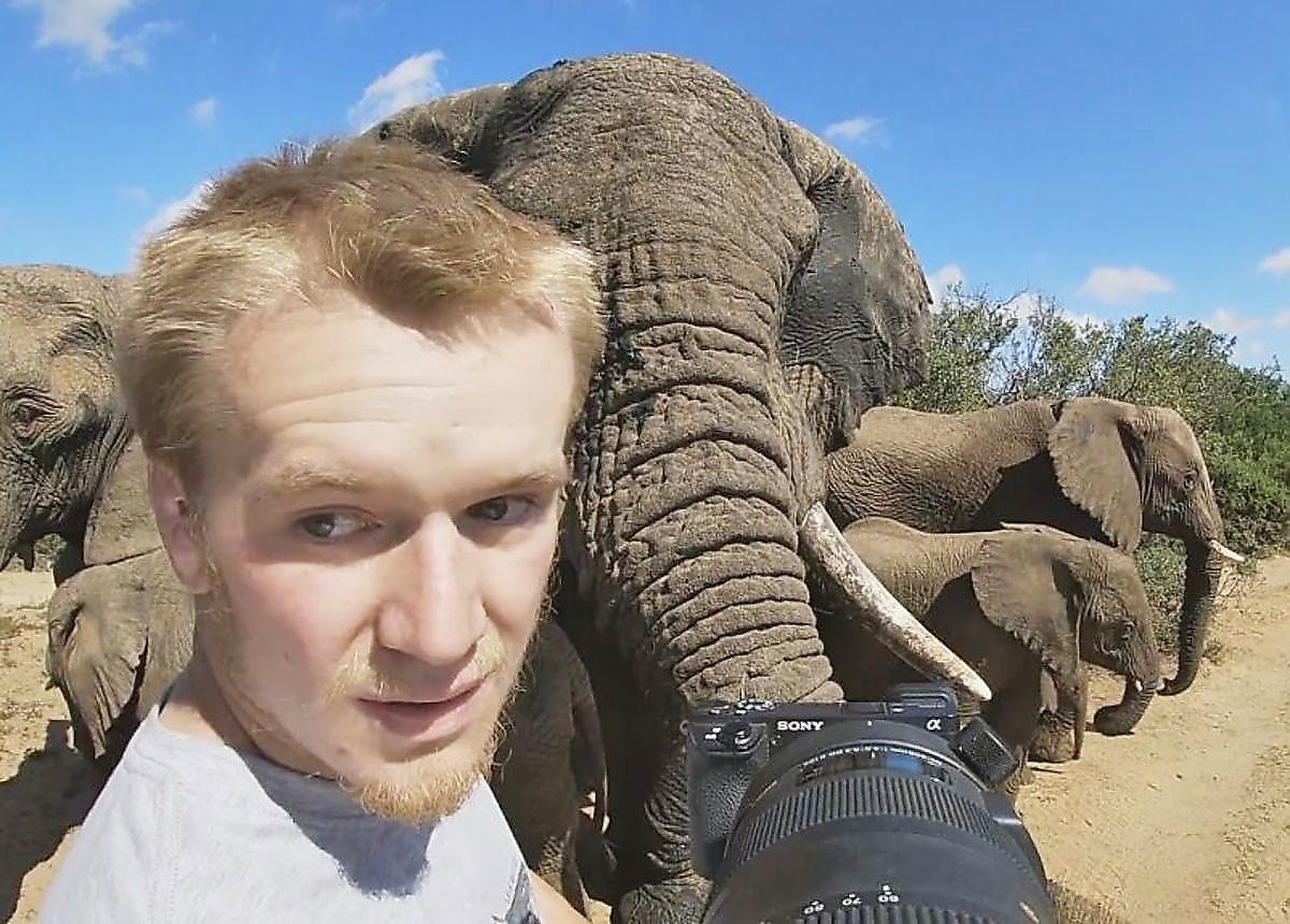 slony-zastigli-s-polichnym-shpionivshego-za-nimi-fotografa-foto-big (1)