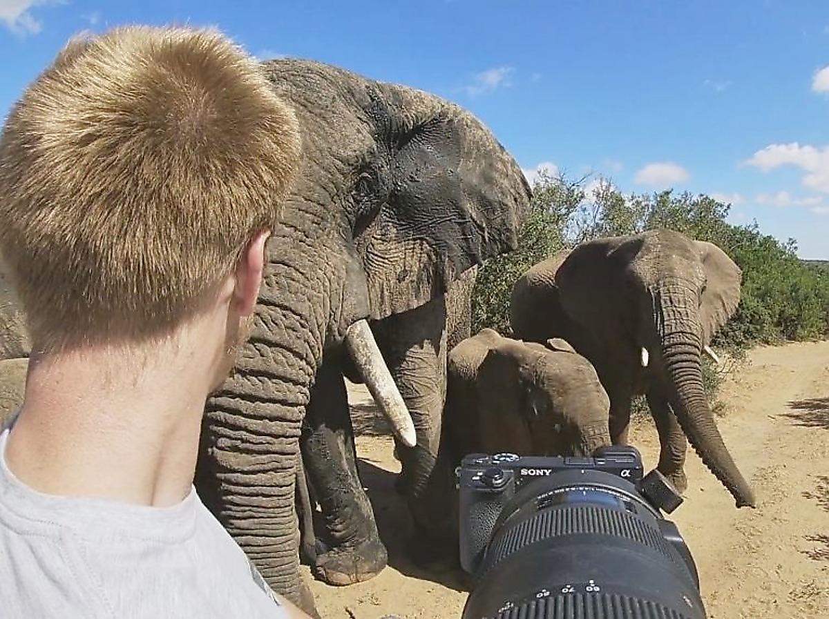 slony-zastigli-s-polichnym-shpionivshego-za-nimi-fotografa-foto2-big
