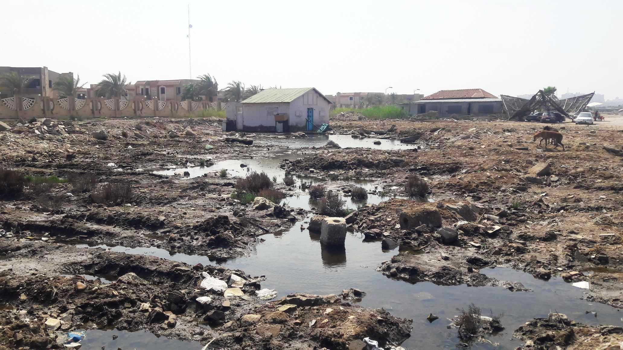 أضبط مخالفة  كارثة  مياه المجارى تصب فى شاطئ بورفؤاد ...  (5)