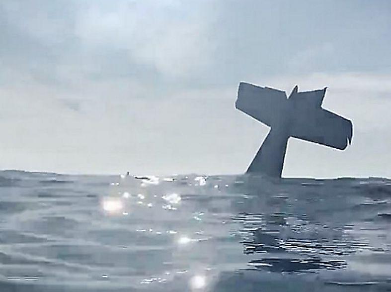 pilot-i-passazhir-zapechatlelis-na-fone-tonuschego-v-okeane-samolyota-foto-big