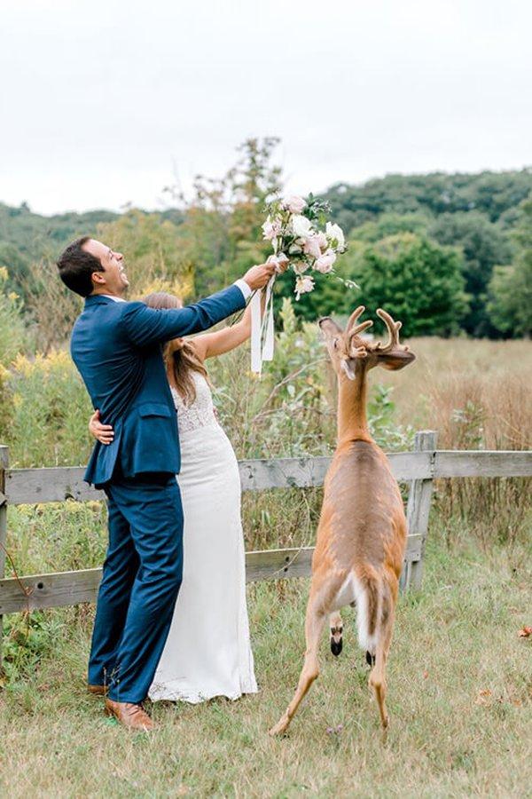 10092019-wedding-deer-7
