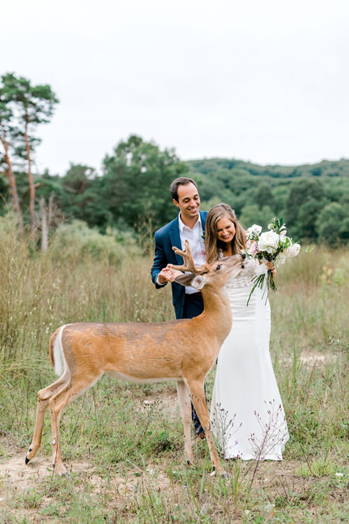 10092019-wedding-deer-8