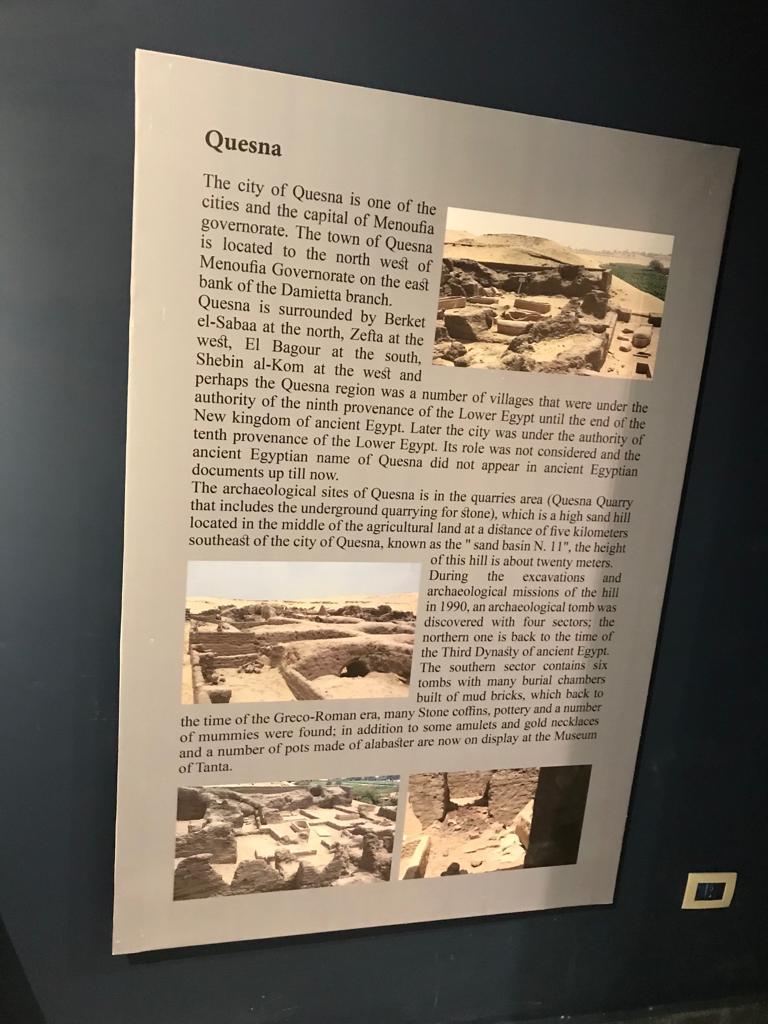 متحف طنطا (74)