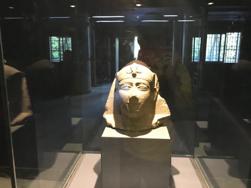 متحف طنطا (36)
