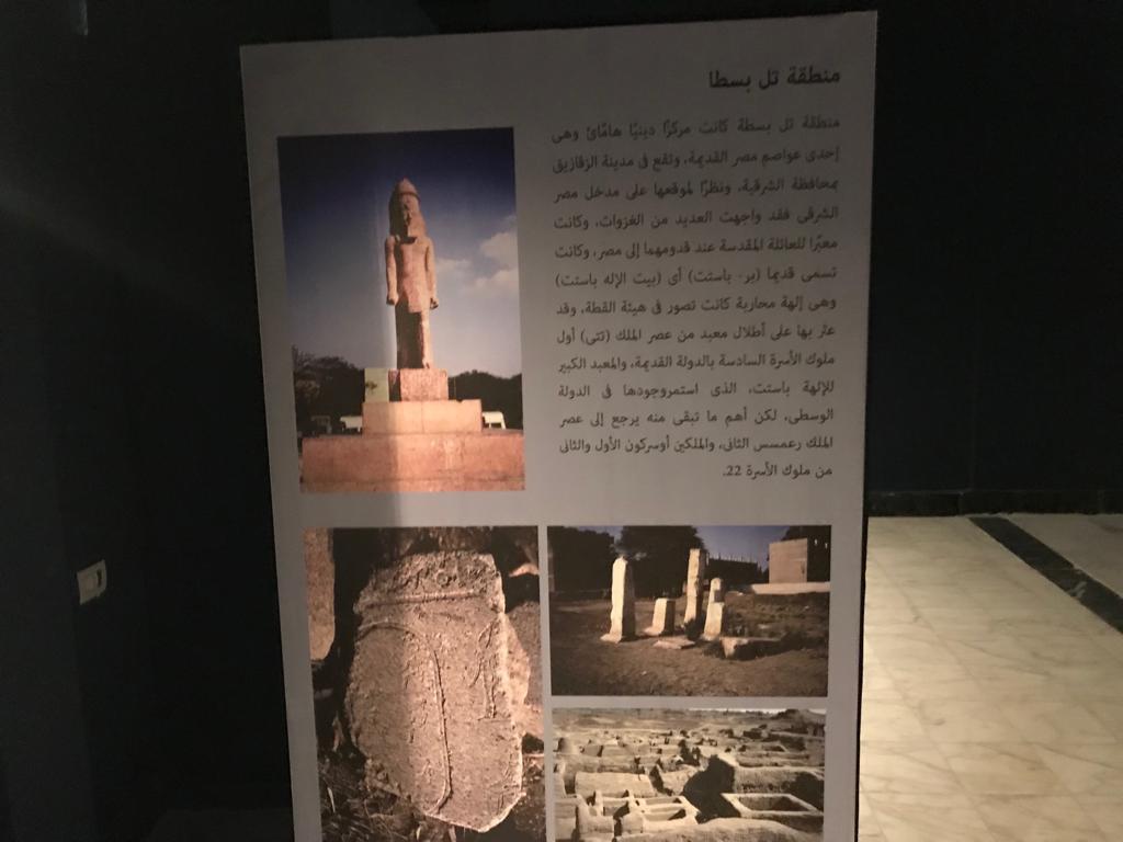متحف طنطا (48)