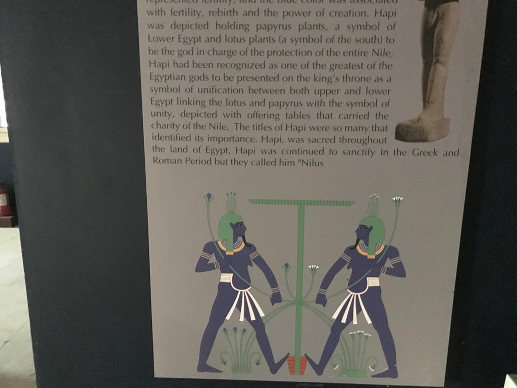 متحف طنطا (43)