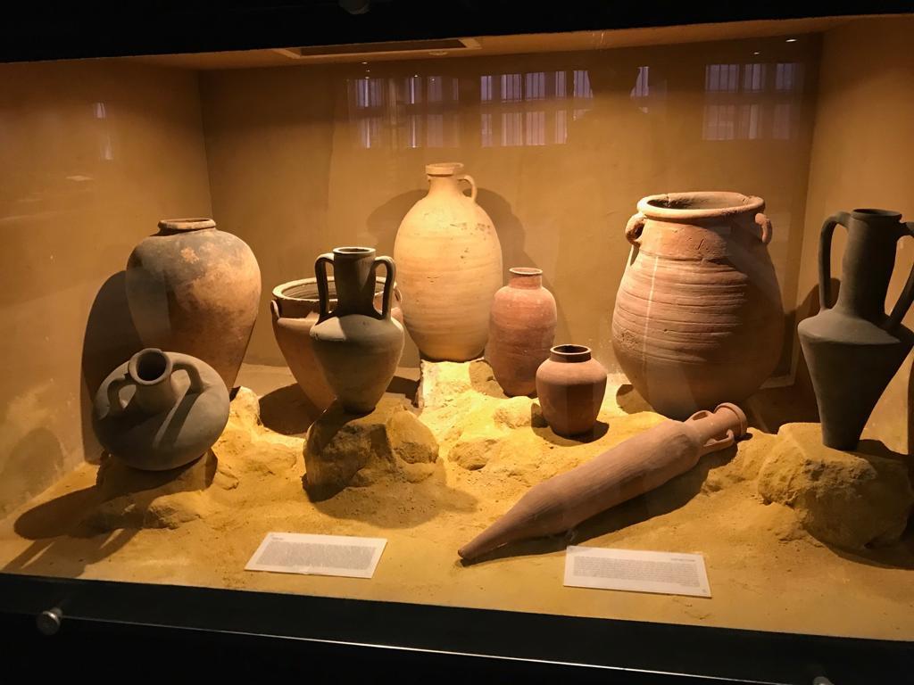 متحف طنطا (10)