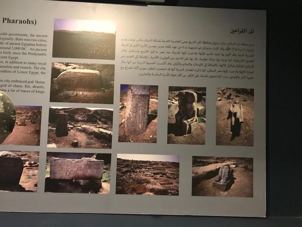 متحف طنطا (50)