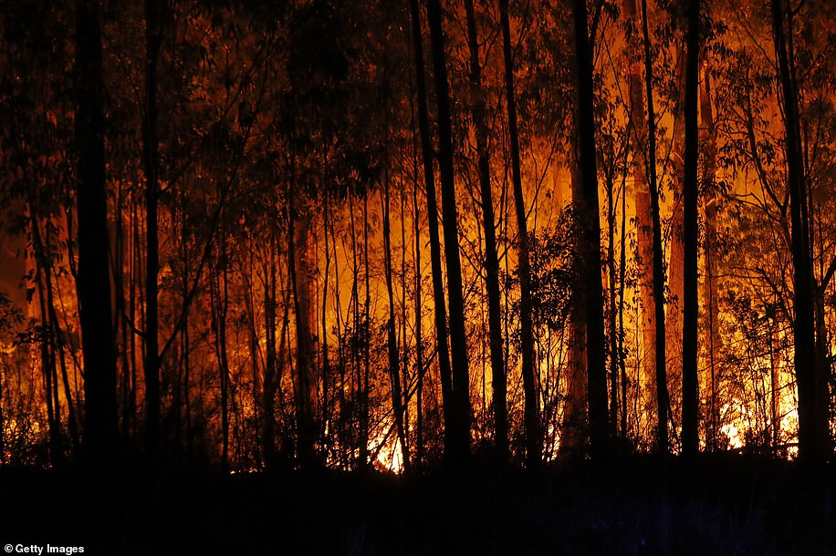 22912014-7844519-More_than_50_fires_were_raging_across_the_state_on_Thursday_with-a-2_1577992241797