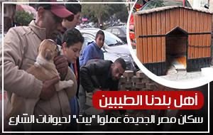"""أهل بلدنا الطيبين.. سكان مصر الجديدة عملوا """"بيت"""" لحيوانات الشارع"""