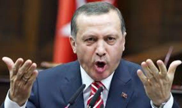 استمرار سقوط أردوغان