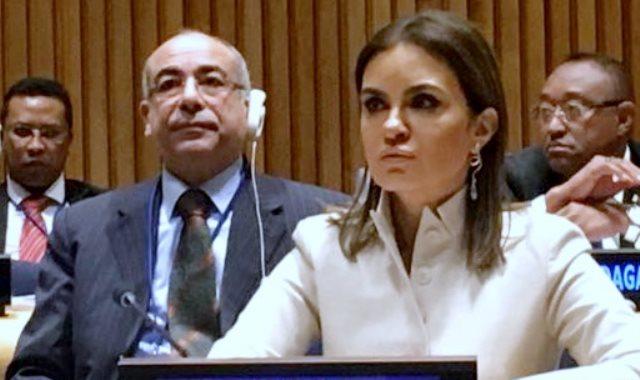 وزيرة الاستثمار خلال اللقاء