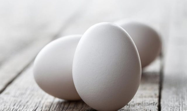استقرار سعر البيض