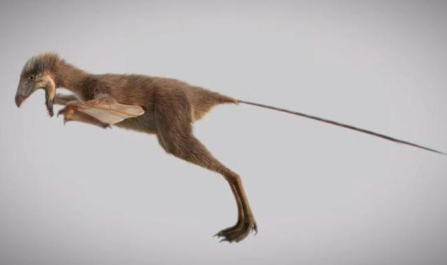 الديناصور أمبتيريكس