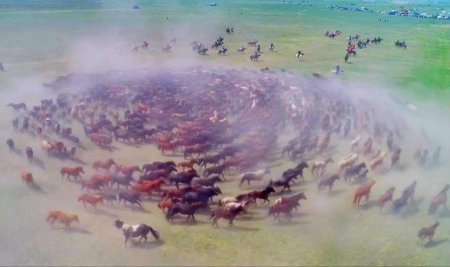 مهرجان الخيول فى الصين