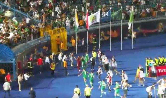 احتفالات جماهير الجزائر