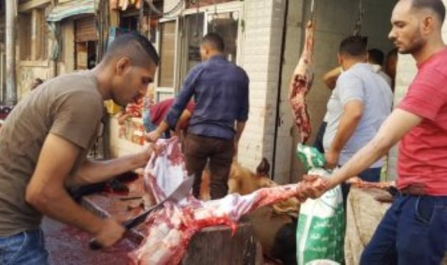 ذبح الأضاحى بأسيوط بمحلات الجزارة