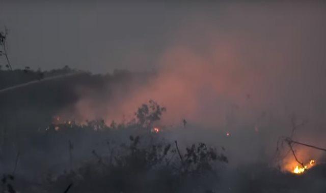 حرائق إندونيسيا