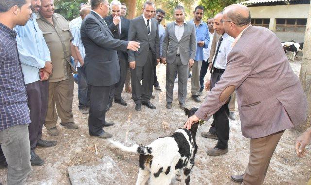 محافظ أسيوط يتفقد مزرعتى الثروة الحيوانية