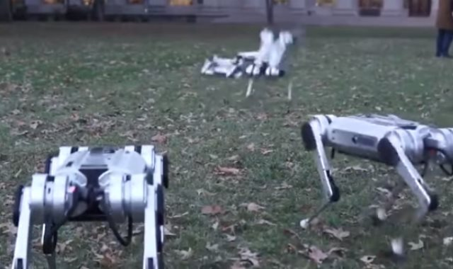 روبوتات على شكل فهد