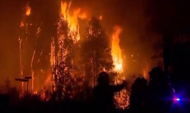 حريق شمال سيدنى