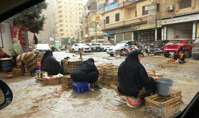 الذبح العشوائى للطيور بالشوارع