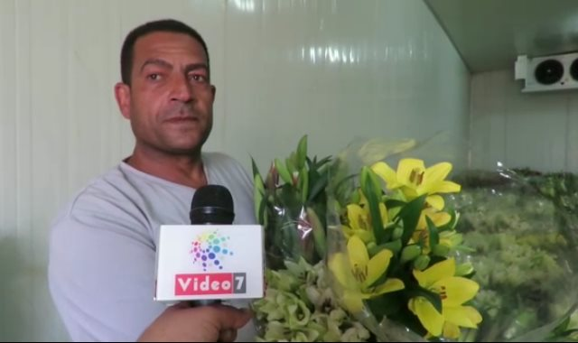 مصطفى جمال عبدالله