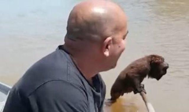 الصياد ينقذ القرد