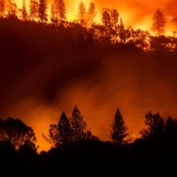 حرائق غابات فى وسط البرتغال