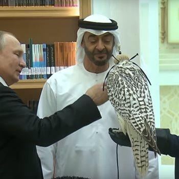 بوتين يقدم الصقر لولي عهد أبو ظبي