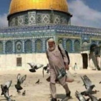 أبو هريرات الأقصى