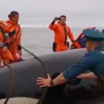 محاولة إنقاذ الحوت