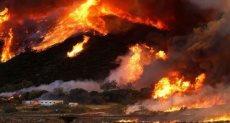 حرائق الغابات ـ صورة أرشيفية