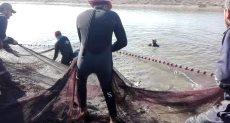 كيفية إخراج السمك من مزارع هيئة قناة السويس