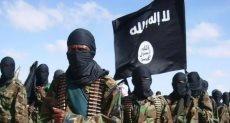 تنظيم صومالي